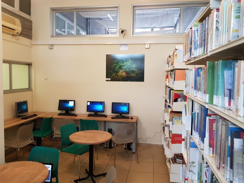 ספריה ברושים